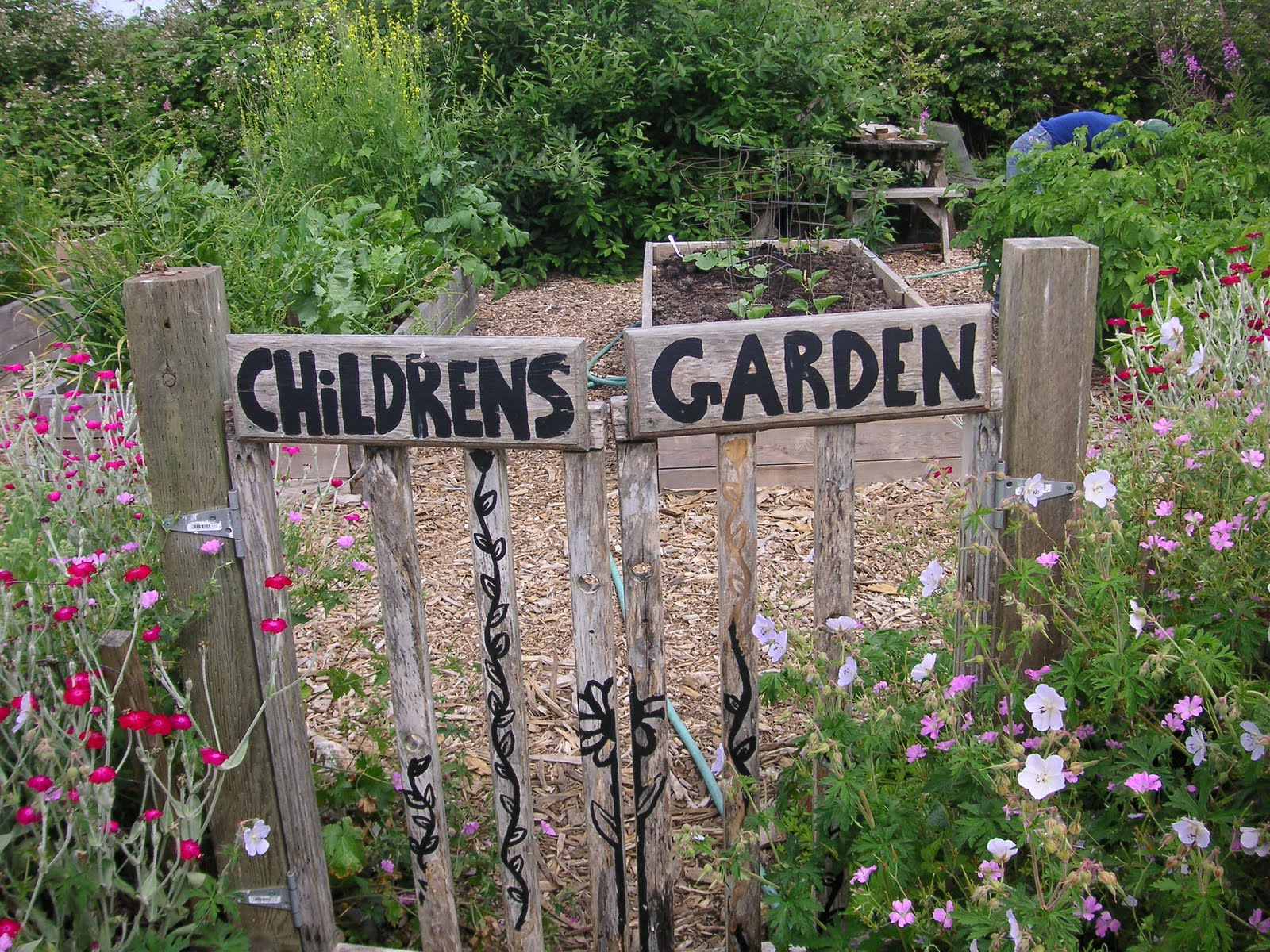 Vegetable Garden For Kids Part - 43: The German Education System And The Childrens Garden